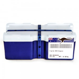 Australia 250 x 1$ Kangur 2020 1 Oz Ag.999 mini monster box